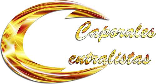 Caporales Centralistas Puno | Perú Caporal | perucaporal.com